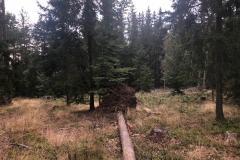 kola_sumava_12-15_09_2019_36